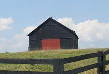 Barn Beautiful / by Jenn Otto