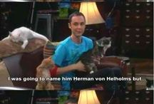 The Big Bang Theory Stuff