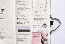 Journal insp.