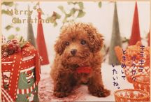 Christmas Card from Japan