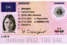 Đổi bằng lái xe Đan Mạch sang Việt Nam
