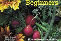 gardening / by Katharine Randall
