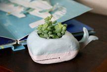Pflanzenliebe / Plant Lover
