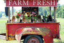 Farm Gate Stall