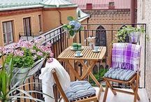 Piante per balconi in città