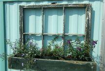 growing green things. / by Kellie Baldwin