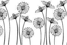 AAA  FLOWERS / by frances picceri