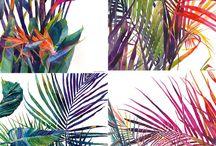 malování - tropical garden