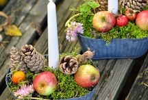 październik / dekoracje, ogrody, przyroda