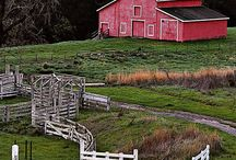 BARNS and...... / by Jennifer Mitchell