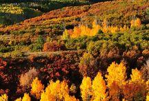 Colorado / by Dee Cross Pierce
