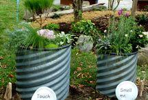Garden ideas / by Julie Garcia