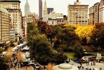 Seasons / New York City is the best place on earth to enjoy all for seasons!