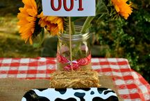 Farm Birthday Ideas
