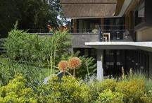 Grote tuinen / Grote groene tuinen - Esselink Hoveniers