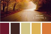 Color p/ exteriores
