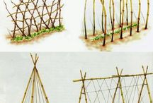 tutori piante