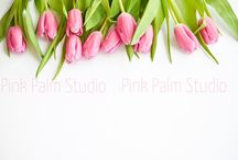 Beautiful Styled Stock Photography / Beautiful Styled Stock Photography including desktops, frames and product photography