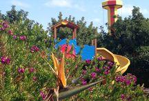 MIRAGICA: IL PARCO / Il Parco divertimenti di Miragica a Molfetta (Puglia) è totalmente immerso nel verde, a due passi dal mare e in primavera è un'esplosione di fiori, colori e profumi!