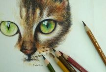 colored pencils  kredki