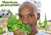 Where do you get your protein? / Organic Vegetables