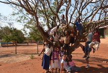 """Estate in missione Tanzania / Il Centro di Pastorale Giovanile e Vocazionale propone, ai giovani dai 18 ai 35 anni, """"Estate in Missione"""",  diverse esperienze nelle missioni passioniste in Tanzania, nei mesi di Luglio e Agosto."""