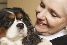 Dog Health / Important tips for the health and care of your #dog