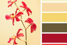 Color schemes / Decorating
