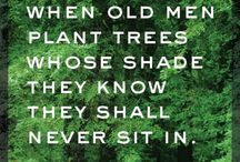 Wise Words / by Jennifer Smith