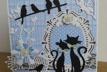 Cats birds