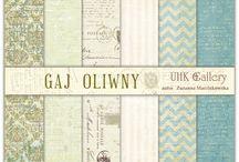 UHK Gallery 2013 - Gaj Oliwny