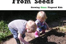 Gardening with children / by Rochelle Andre