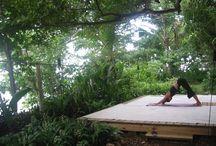 NV yoga area