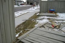 Fences and repairs / Fences