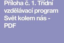 ŠVP, TVP