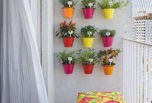 Gardening / Balcony etc. ...