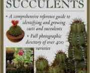 Succulents / by Julieanne Cole