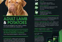 Productos naturales para mascotas