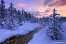 A winter's tale / by Refinnej Tweed