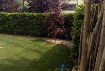 Realizzazione giardini / Realizzazione giardini privati.