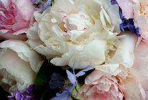 Flowers/gardening