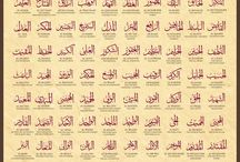 My Lord / The Name Of Allah SWT
