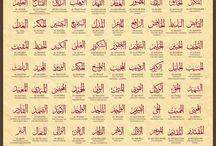 I am Muslim