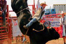 Ride 'Em Cowboy. / by Jamilee Smith