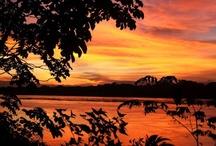 Peruvian Amazon / Wildlife and nature in the Peruvian Amazon