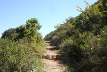 paths and sights at Kyparissi