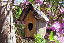 Bird Houses of New England
