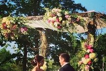 Trellises/Chuppahs / Beautiful designs to frame you during your ceremony