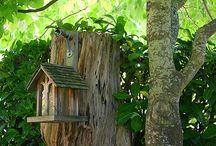 Birdhouses / by Lydia Billman