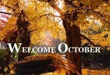 Autumn Golden / by Robyn Frandemo